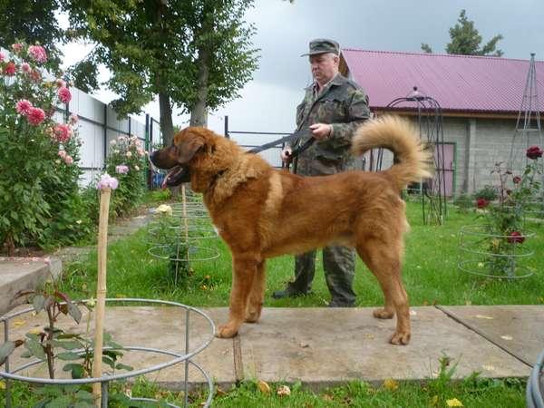 http://s4.forumimage.ru/uploads/20110911/131573794990007943.jpg